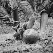 Выставка «Футбол 2018. Жизнь и игра» фотографии
