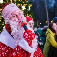 Новогодняя ночь 2019 в Лианозовском парке фотографии