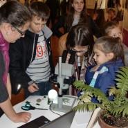 Фестиваль науки в «Аптекарском огороде» 2015 фотографии