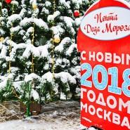 Почта Деда Мороза в парках Москвы 2017 фотографии