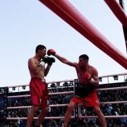Международный день бокса 2019 фотографии