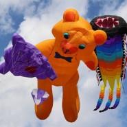 XVII Фестиваль воздушных змеев «Пестрое небо» фотографии