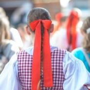 Фестиваль Чехии 2019 фотографии