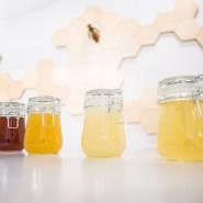 Музей «Пчеловодство» на ВДНХ фотографии