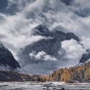 Фестиваль природной фотографии «Nature Photo Talks» 2019 фотографии