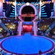 Цирк Никулина на Цветном Бульваре фотографии