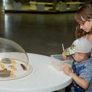 «День древних обитателей Земли» в Дарвиновском музее 2020 фотографии