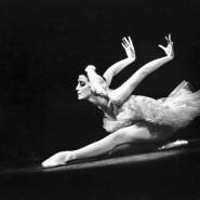 Выставка «Я, Майя Плисецкая» фотографии