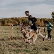 Кросс «Быстрый пес» 2019 фотографии