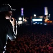 Концерт «Limp Bizkit» в Москве 2015 фотографии