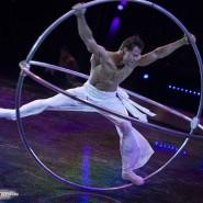 Всемирный фестиваль циркового искусства «ИДОЛ-2015» фотографии