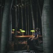 Выставка «Ночь в библиотеке» фотографии