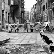 Выставка «От неореализма к Аквилее» фотографии