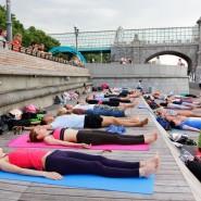 Йога в парках Москвы 2017 фотографии