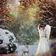 Рождество в парках Москвы 2016 фотографии