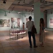 Выставка «Лица ландшафта» фотографии