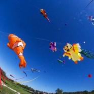 XV Фестиваль воздушных змеев «Пестрое небо» фотографии