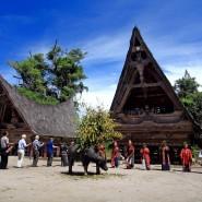 Фестиваль Индонезии в саду «Эрмитаж» 2016 фотографии