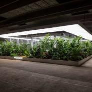 Выставка «Грядущий мир: экология как новая политика. 2030–2100» фотографии