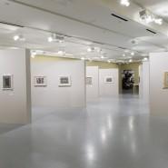 Выставка «Федор Семенов-Амурский. В садах моего воображения» фотографии