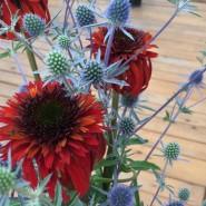 Выставка «Лилии и другие цветы июля» фотографии