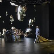 Шоу «Сны спящей красавицы» 2019 фотографии