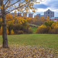 Парк 50-летия Октября фотографии