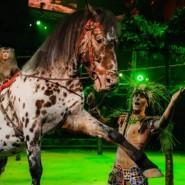 Цирковое шоу «Бурлеск!» 2019 фотографии