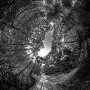 Выставка «Расширяя территории. Департамент потерянных мест и новых воспоминаний» фотографии