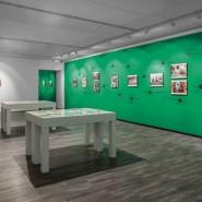 Выставка «Flower Power. Архив» фотографии