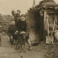 Выставка «Война и мир. На заре фотожурналистики. 1910-е годы» фотографии