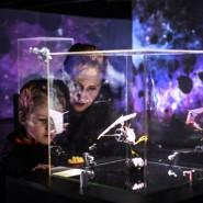 Выставка «Таинственные обитатели Вселенной» фотографии