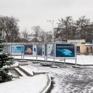 Фотовыставка «Открываем Антарктику вместе» фотографии