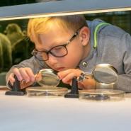 Всемирный день защиты животных в Дарвиновском музее 2019 фотографии