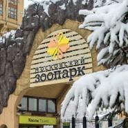 Новогодние праздники в Московском зоопарке 2019/20 фотографии