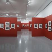 Выставка «Эммануил Евзерихин. Ретроспектива» фотографии