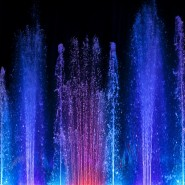 Праздник «7Я» в Парке «Фили» фотографии