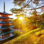 Лекция «Путешествие в Японию, лайфхаки по стране» фотографии