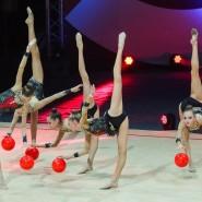 Шоу Алексея Немова «Легенды спорта» 2018 фотографии