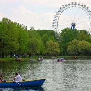 День семьи, любви и верности в Измайловском парке фотографии