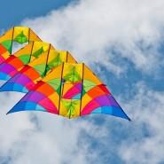 Фестиваль воздушных змеев «Пестрое небо» 2016 фотографии