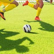 Выставка об истории отечественного футбола фотографии