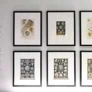 Выставка «Кристаллография Малевича и Леонидова» фотографии