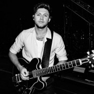 Концерт Niall Horan 2020 фотографии