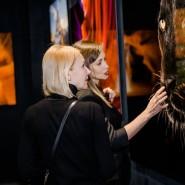Выставка-продажа фотографии и скульптуры в Surround Art Gallery фотографии