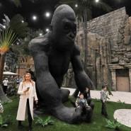 Парк развлечений «Остров мечты» фотографии
