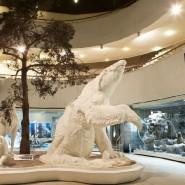 Выставка «Великие открытия и великие ошибки Жоржа Кювье» фотографии
