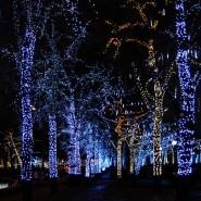 Фестиваль «Путешествие в Рождество» 2015 фотографии
