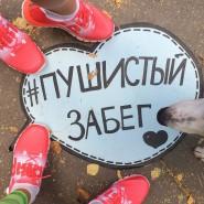 Пушистый забег в парке «Кузьминки» 2016 фотографии