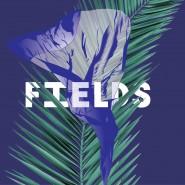 Фестиваль авангардной музыки Fields 2016 фотографии